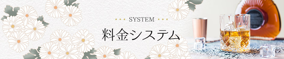 system_banner